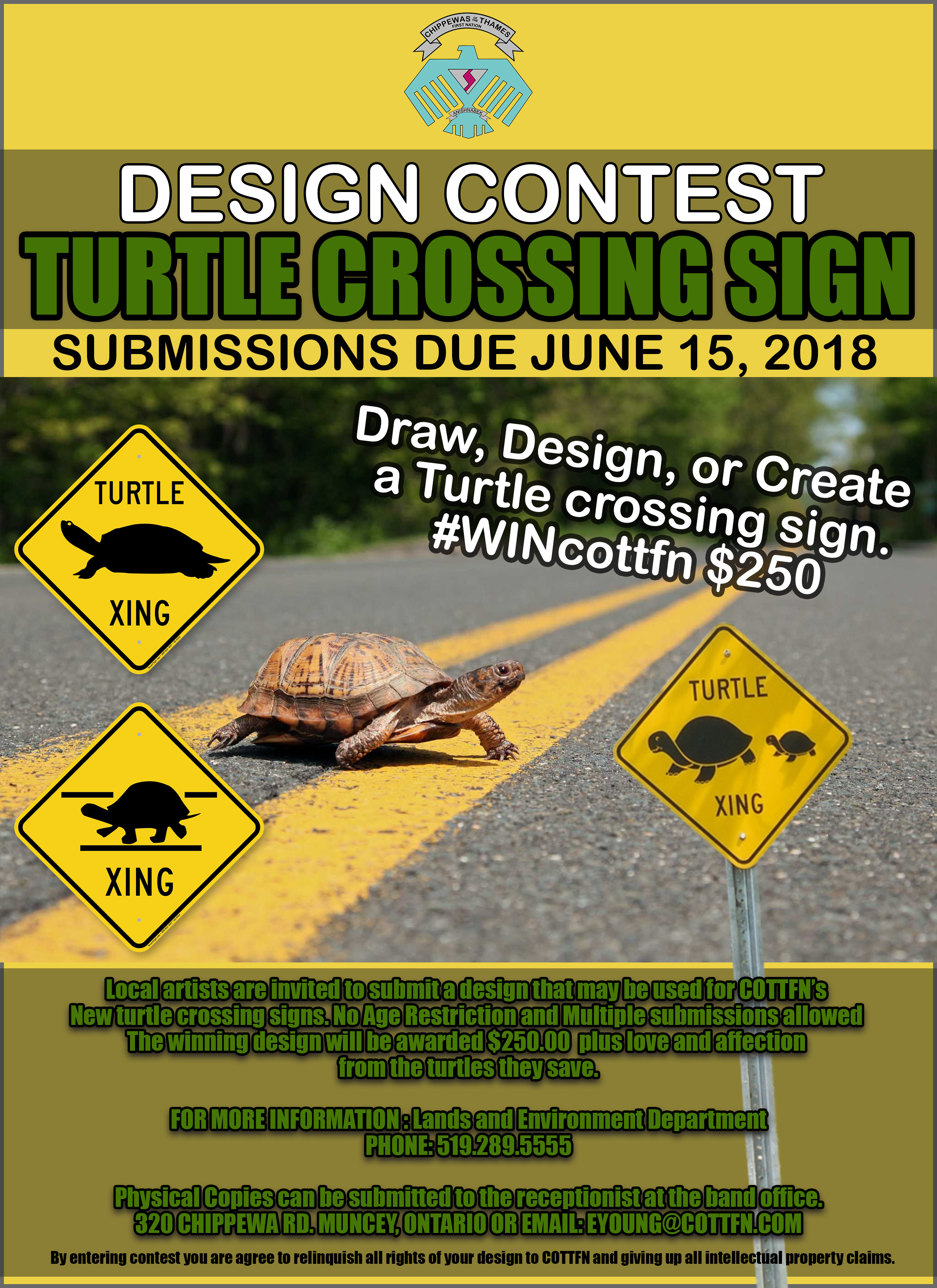 turtle-crossing-signs-contest-master