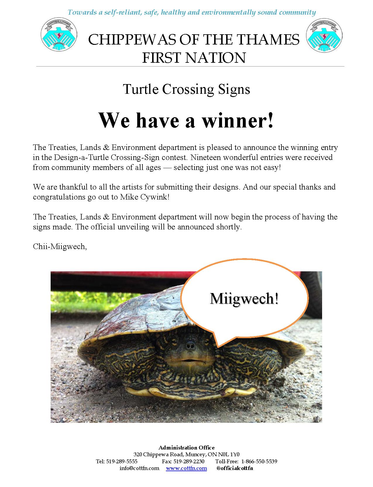 turtle-crossing-winner